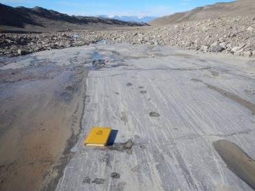 2015: Petermann glacier bedrock- evidence of glaciation!